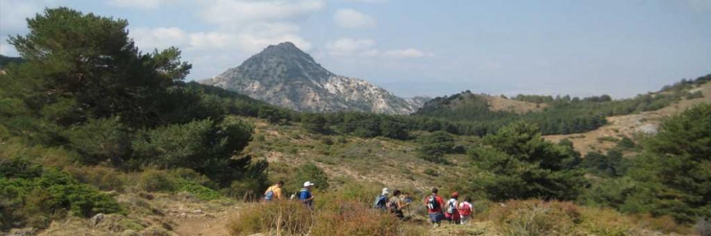 De Prado Llano a Cumbres verdes