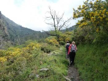 Ruta Casa Forestal de Tello
