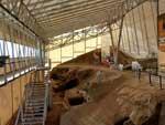 Centro Paleontologico de Fonelas
