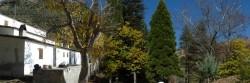 Casa forestal de Tello