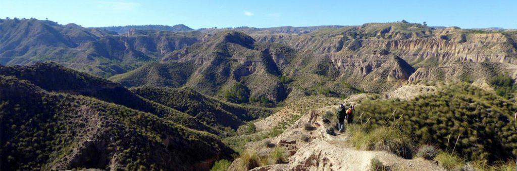 Monte Pajarillo - Bacor